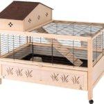 Домик для кролика уникального дизайна