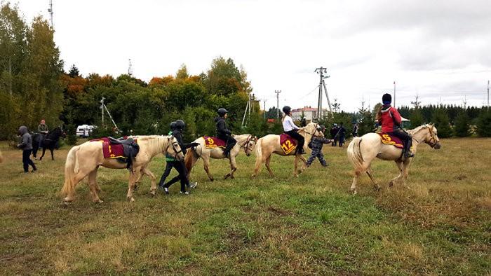 Татарские кони