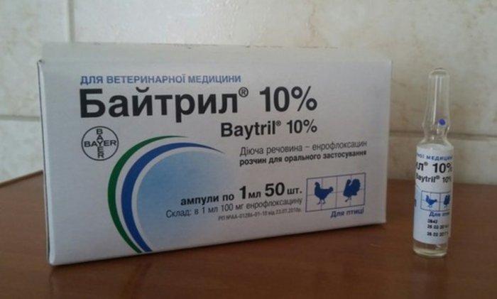 Лекарство Байтрил в ампулах