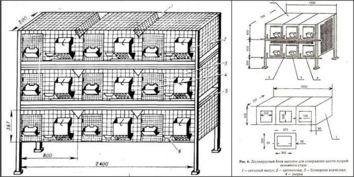 Многоярусные конструкции для нутрий
