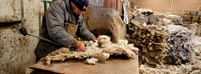 Обработка овечьей шерсти