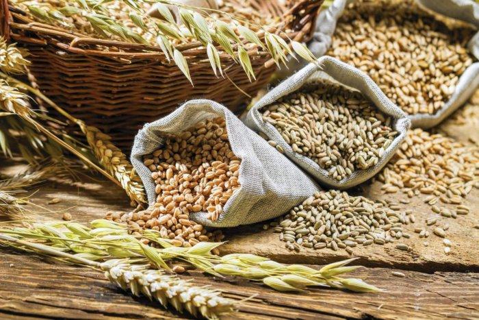 Зерно для нутрий