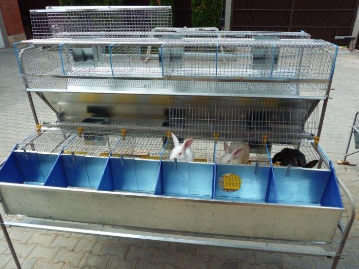 Конструкция клетки для откорма кроликов