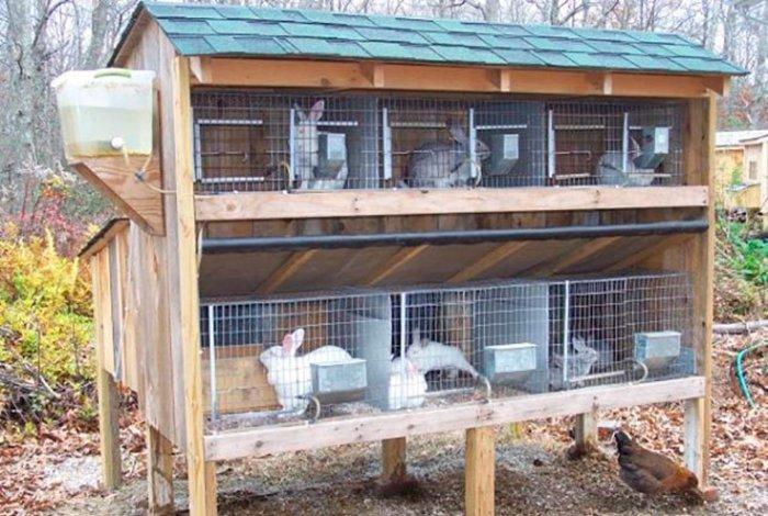 Комфортное и просторное место содержание кроликов