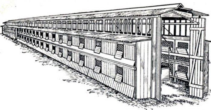 Конструкция сарай-шед