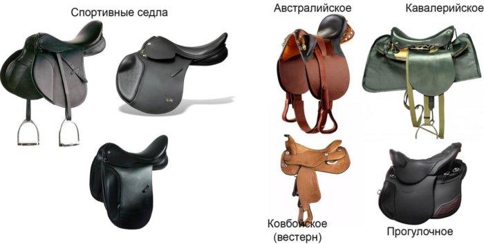 Разновидности седел для лошадей