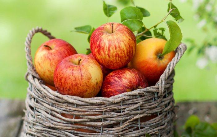 Хранение вместе с яблоками противопоказано