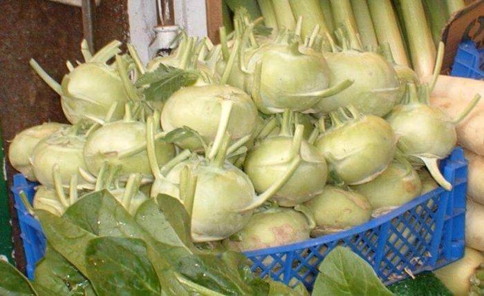 Хранение капусты кольраби