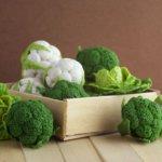 Урожай брокколи