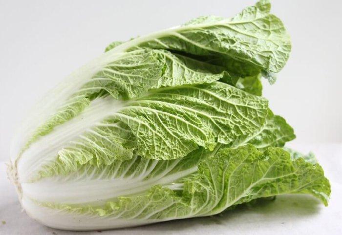 Сорт капусты Бокал